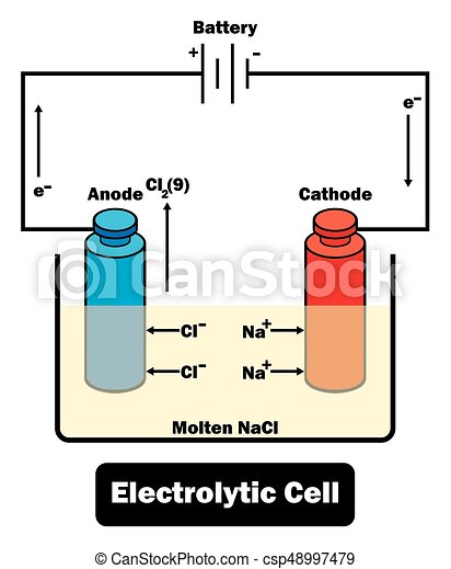 Electrolytic cell diagram including all parts and reaction ...
