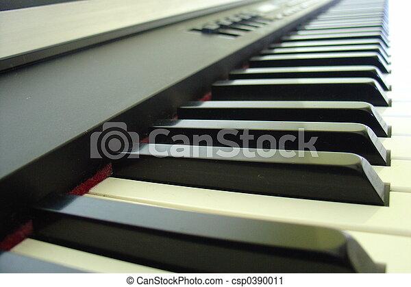 Electronic keyboard - csp0390011