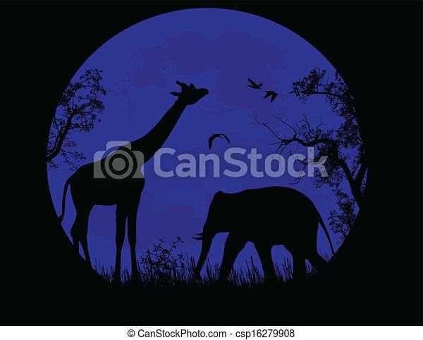 elefante, tramonto, sopra, blu, selvatico, giraffa - csp16279908
