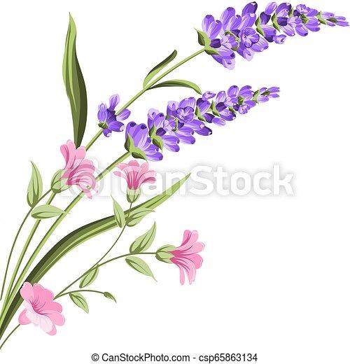 Elegant Card With Lavender Flowers Elegant Card With Lavender