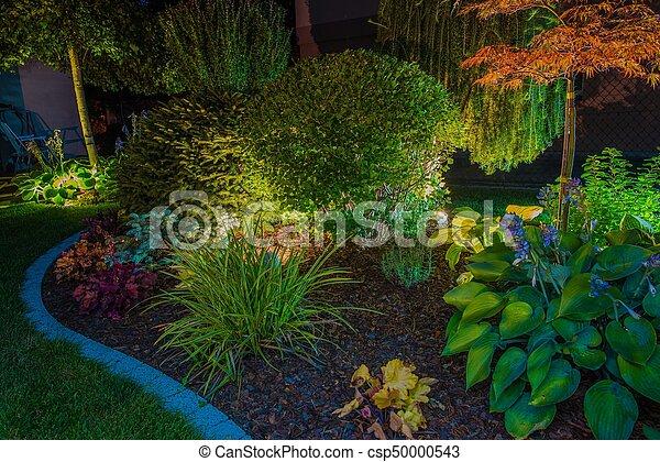 Elegant Garden Illumination - csp50000543