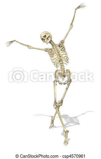 Un esqueleto toma una postura elegante - csp4570961