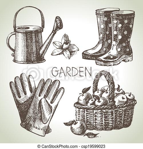 elementos, set., jardinagem, esboço, desenho, mão, desenhado - csp19599023