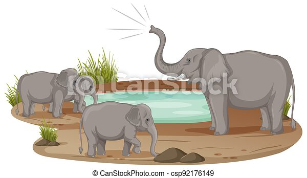 Elephant family standing at the pond isolated on white background - csp92176149