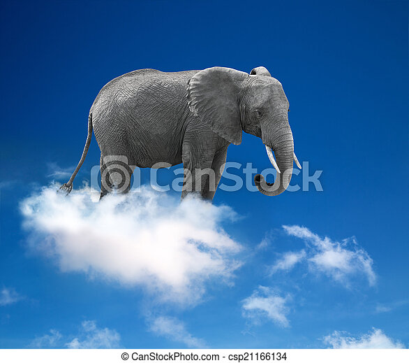 elephant in the clouds - lightness  - csp21166134