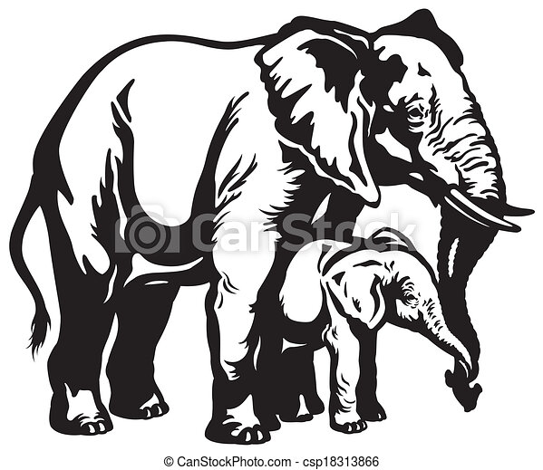 African Elephant Mother With Baby Black And White Illustration