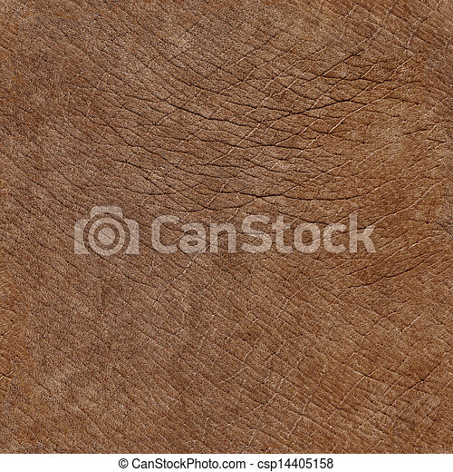 Elephant skin surface - seamless natural texture