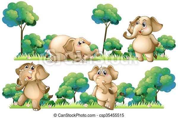 Elephants on the field - csp35455515