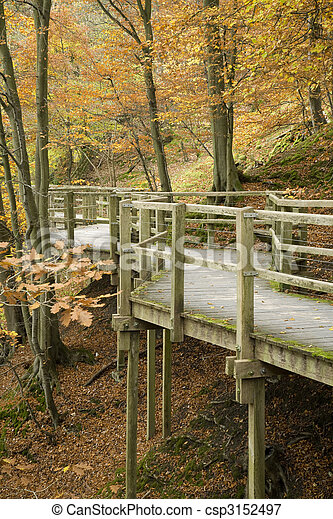 Elevated wooden walkway section of the walk along the River Greta in Keswick, Lake District, Cumbria, Uk - csp3152497