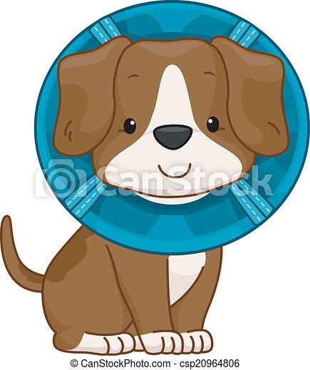Elizabethan Collar Dog Illustration Of A Cute Dog Wearing An