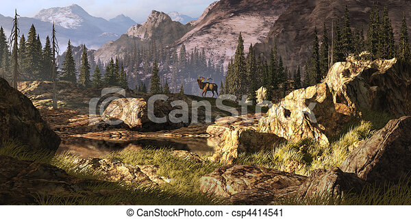 Elk In The Rocky Mountains - csp4414541
