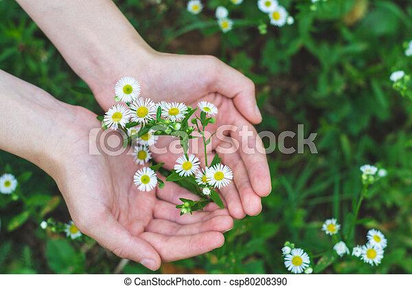 Embracing Wild Flowers - csp80208390