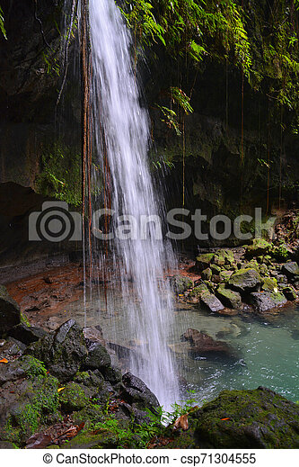 Emerald pool and waterfall in Dominica tropical rainforest. - csp71304555