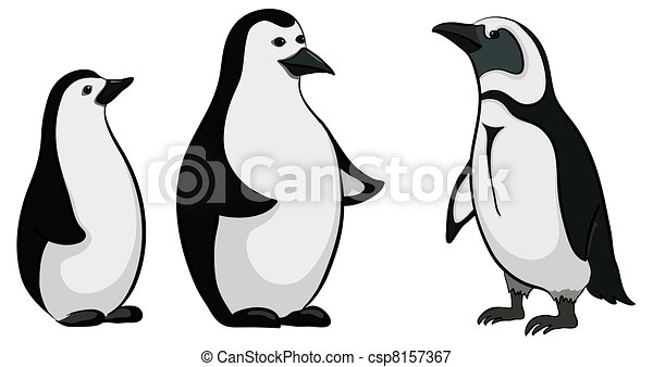 Line Drawing Penguin : Antarctic black and white emperor penguins on stock