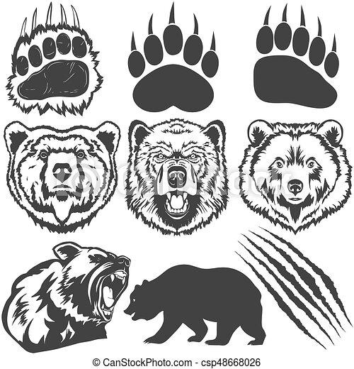 Empreinte griffe grattements vecteur ours patte - Dessin de grizzly ...