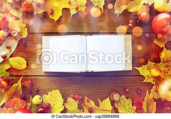 empty book with autumn leaves, fruits and berries - csp39884886