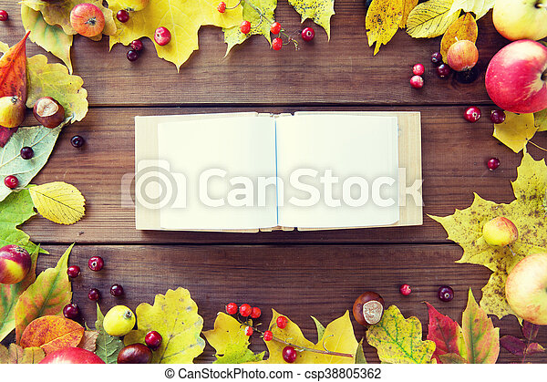 empty book with autumn leaves, fruits and berries - csp38805362