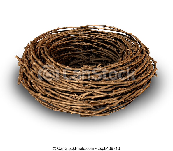 Empty Nest - csp8489718