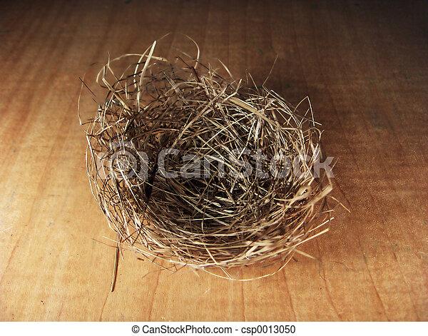 Empty Nest - csp0013050