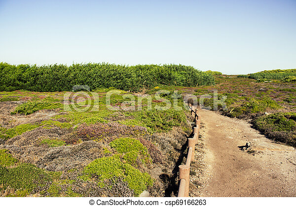 Empty path in rural landscape. Walkway in rocks with grass. Trail in the meadow. - csp69166263
