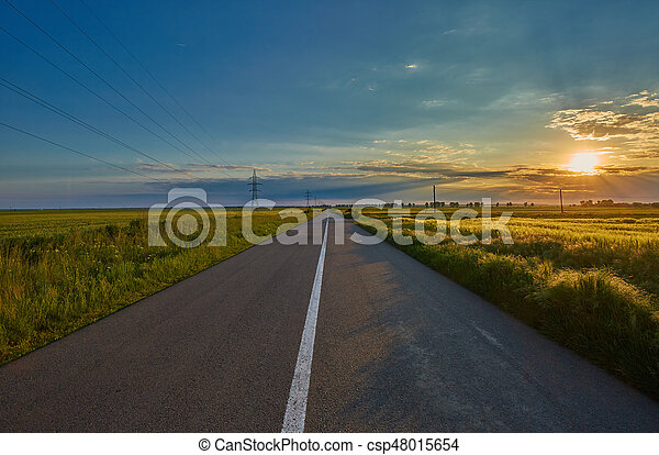 Empty road through wheat fields - csp48015654