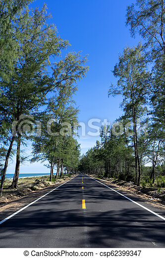 Empty road with pine trees and blue sky. - csp62399347