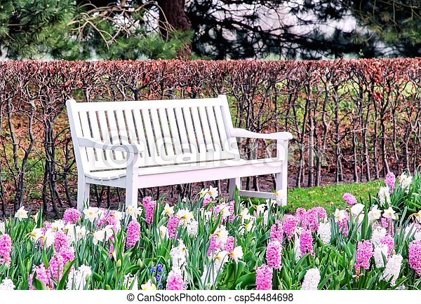 Empty white bench in spring park - csp54484698