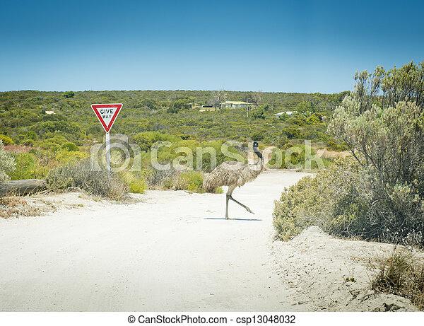 Emu Give Way Sign - csp13048032