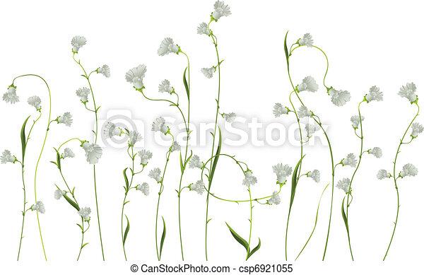 Flores sobre blanco - csp6921055