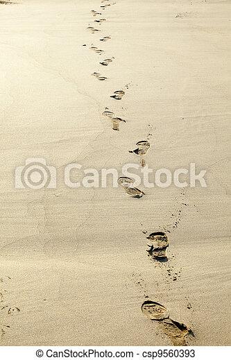 encombrements, sable, humain - csp9560393