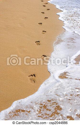 encombrements, sable plage - csp2044886