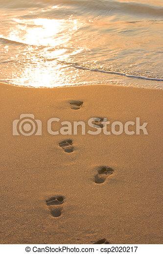 encombrements, sable plage - csp2020217