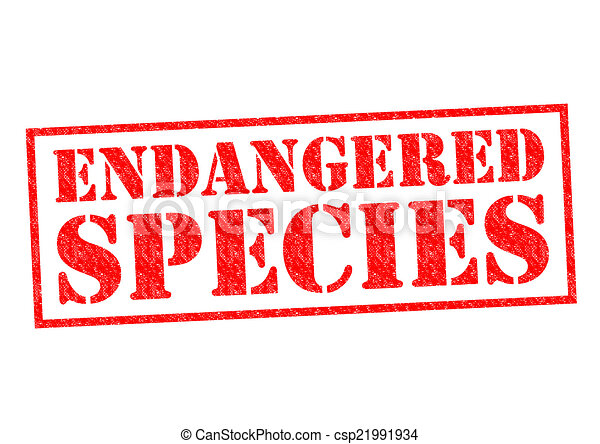 Endangered Species Red Rubber Stamp Over A White Background