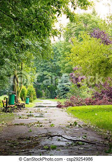 endommagé, asphalte, parc, après, arbre, orage, sentier - csp29254986