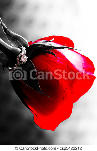 Engagement Ring Rose A Red Rose Upside Down With An Engagement Ring