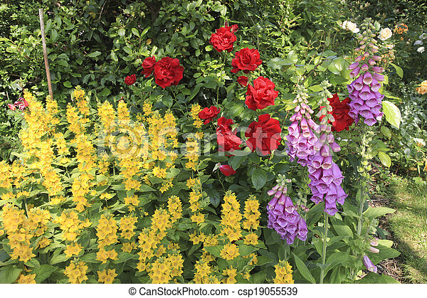 English Garden Flowers Yellow Flowers Red Roses And Fox Gloves