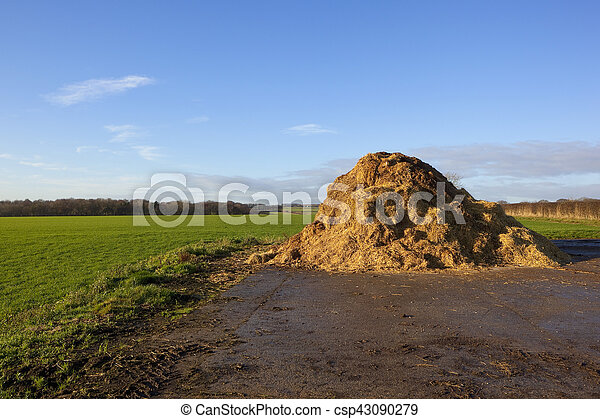 english landscape with manure - csp43090279