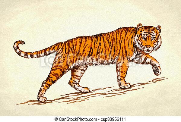 engrave ink draw tiger illustration color engrave ink Antique Gold Flowers Clip Art Victorian Flower Clip Art