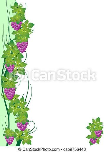 Viña de uva - csp9756448