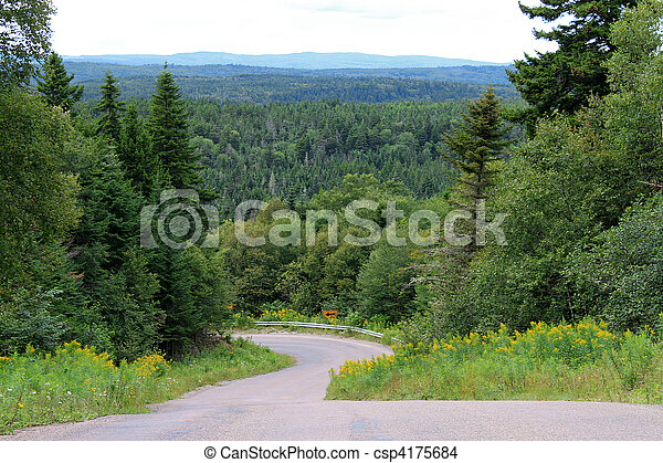 enrolamento, árvores, estrada - csp4175684