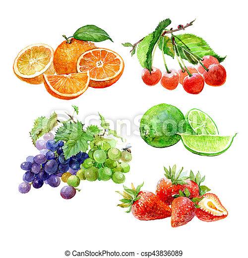 ensemble, cerise, orange, raisin, isolé, aquarelle, fraise, fruits, chaux, citron - csp43836089