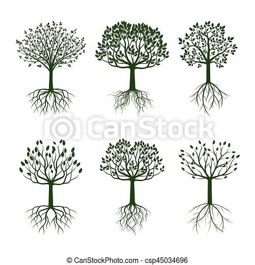 ensemble, illustration., arbres, vecteur, vert, roots. - csp45034696