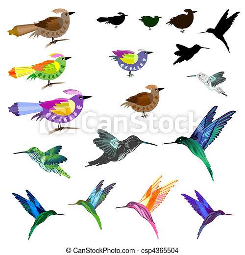 ensemble, oiseaux - csp4365504