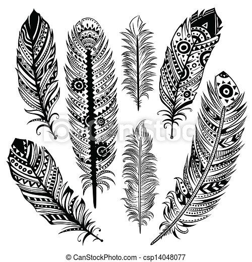 ensemble, plumes, ethnique - csp14048077