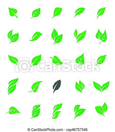 ensemble, vert, leaves. - csp46757346