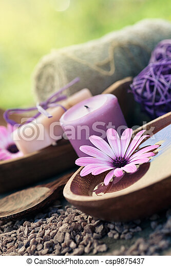 ensemble, violet, dayspa, nature - csp9875437