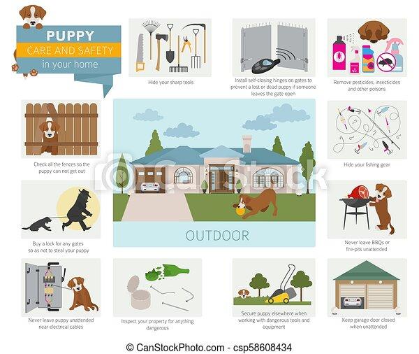Cuidado de cachorros y seguridad en su casa. Al aire libre. Diseño de entrenamiento de perros mascotas - csp58608434
