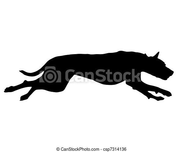 Entrenamiento de perros - csp7314136