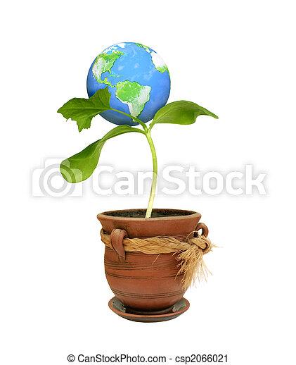 Environment - csp2066021