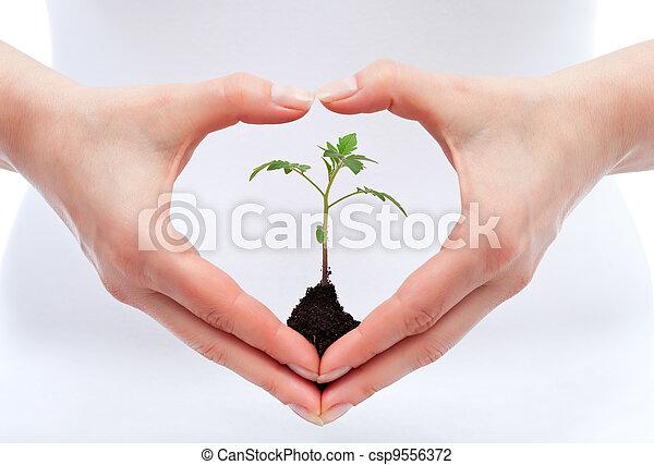Environmental awareness and protection concept - csp9556372